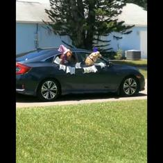 Watch: Adorable golden retrievers get an elaborate drive-by birthday party