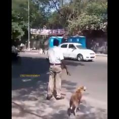 Watch: Kind policeman stops traffic to help a dog get to the other side of a Mumbai street