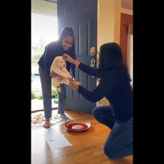 Watch: Indian families in the US welcome new puppies with traditional Hindu rituals