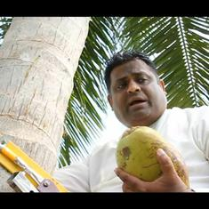 Watch: Sri Lanka's 'coconut minister' holds press conference halfway up a coconut tree