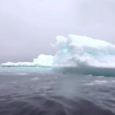 Watch: How scientists are exploring the biodiversity of the frigid waters of the Arctic Ocean