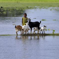 The ill-conceived push for a high dam to curb Kosi flooding is a litmus test for democracy in India