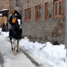 Watch: In snow-laden Srinagar, ecommerce delivery person transports package on a horse