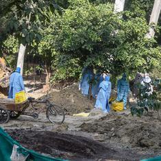 Bird flu: All three civic bodies in Delhi ban sale of chicken