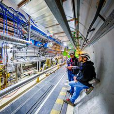 Large Hadron Collider has discovered four new particles (including surprising ones)