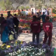 Watch: Visitors throng Tulip Garden in Srinagar, ignoring physical distancing