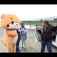 Watch: 'Bear' who walked from Los Angeles to San Francisco has drawn fans and raised over $10,000
