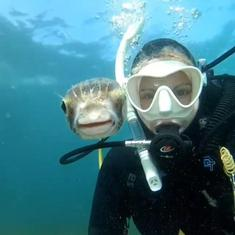 Watch: Diver captures stunning selfie video with pufferfish