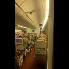 Watch: Air India aircraft to the US returns to Delhi after a bat flies past cabin