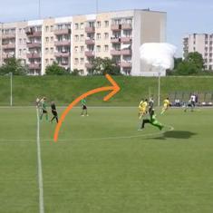 Watch: Parachutist lands on field during football match in Poland