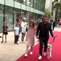 Watch: Dogs walk the red carpet, pose for photographers, at premiere of film about rescued dogs